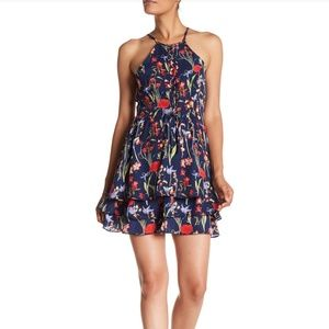 Parker Gardenia Night Fit and Flare Dress